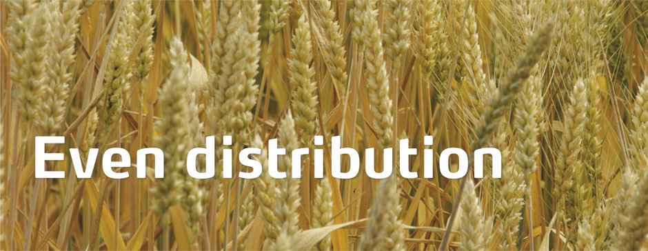 Amidas Distribution header